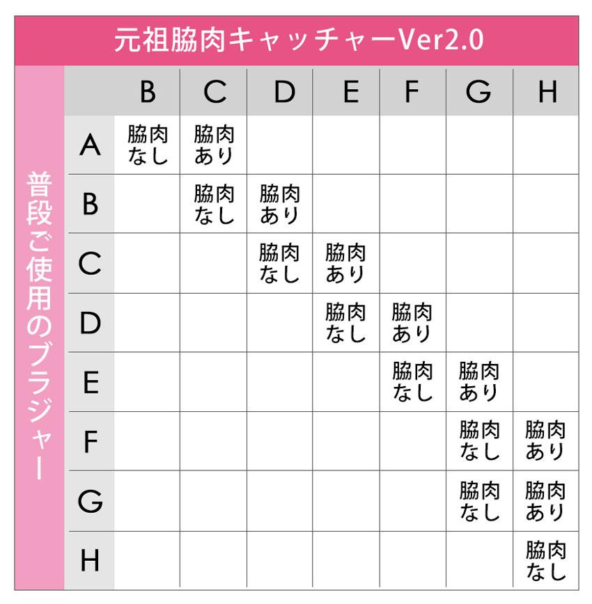 元祖脇肉キャッチャーVer2.0_サイズ表1