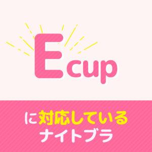 Eカップ_ナイトブラ_サムネ