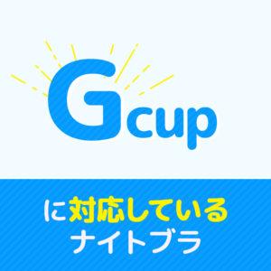 Gカップ_ナイトブラ_サムネ