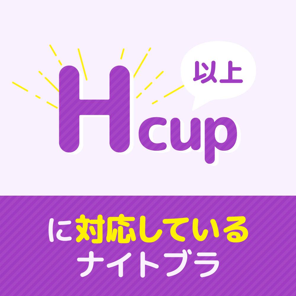 Hカップ以上のナイトブラ_サムネ